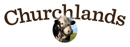 Churchlands Herefords
